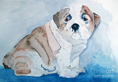 Painting - Bulldog Puppy by Sandy McIntire