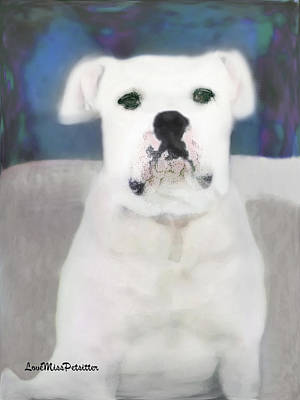Bulldog Rana Art 6 Art Print by Miss Pet Sitter