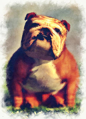 Digital Art - Bulldog... by Tim Fillingim