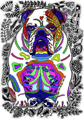 Drawing - Bulldog by ZileArt