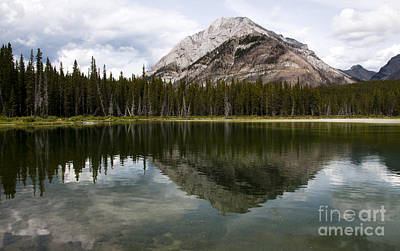 Photograph - Buller Pond In The Kananaskis by Vivian Christopher