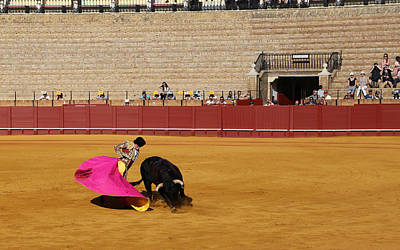 Photograph - Bullfighting 11 by Andrew Fare