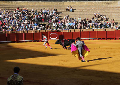 Photograph - Bullfighting 12 by Andrew Fare
