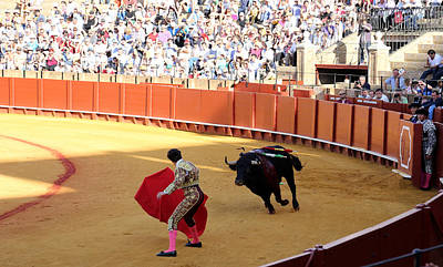 Photograph - Bullfighting 13 by Andrew Fare