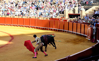 Photograph - Bullfighting 14 by Andrew Fare