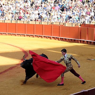 Photograph - Bullfighting 15 by Andrew Fare