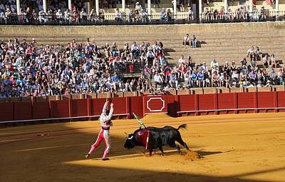 Photograph - Bullfighting 17 by Andrew Fare
