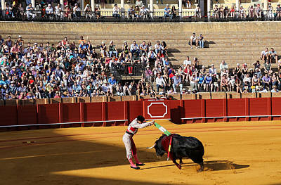 Photograph - Bullfighting 18 by Andrew Fare