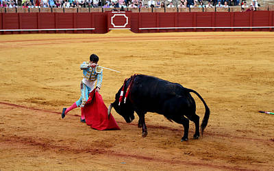 Photograph - Bullfighting 21 by Andrew Fare
