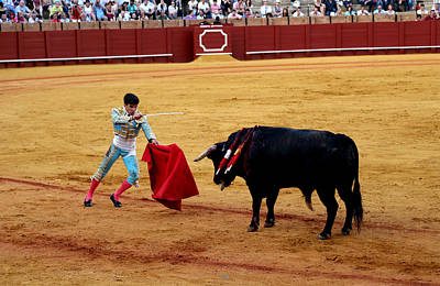 Photograph - Bullfighting 22 by Andrew Fare