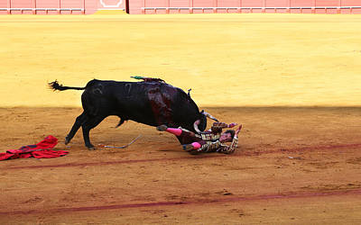 Photograph - Bullfighting 27 by Andrew Fare