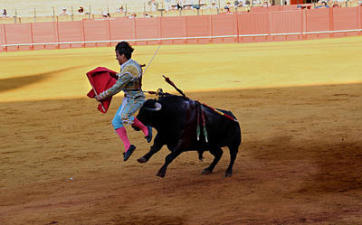 Photograph - Bullfighting 31 by Andrew Fare