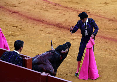 Photograph - Bullfighting 32 by Andrew Fare