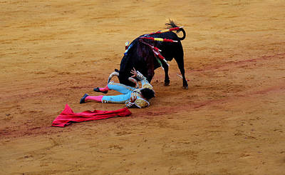 Photograph - Bullfighting 34 by Andrew Fare