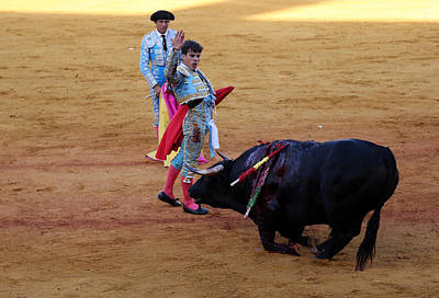 Photograph - Bullfighting 9 by Andrew Fare