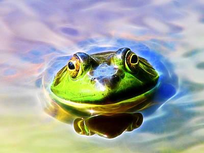 Photograph - Bullfrog by Natalie Rotman Cote