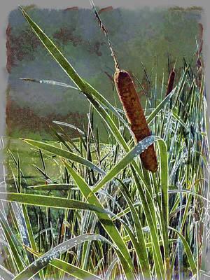 Digital Art - Bullrush by Leslie Montgomery