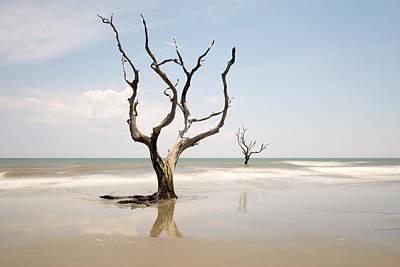 Coast Photograph - Bulls Island C-ix by Ivo Kerssemakers