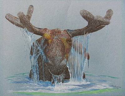 Teton Drawing - Bullwinkle by Dan Hausel
