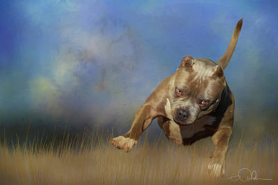 Digital Art - Bully In The Grass by Gloria Anderson