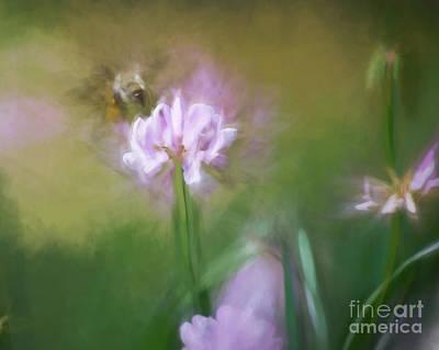 Photograph - Bumble Bee Dreams by Kerri Farley