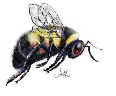 Drawing - Bumble Bee by Jacki Kellum