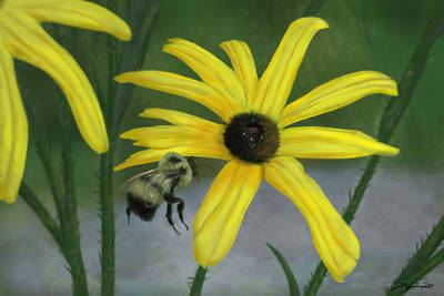 Painting - Bumble Bee by Steven Powers SMP