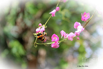 Photograph - Bumble Bee2 by Megan Dirsa-DuBois