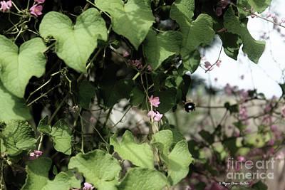 Photograph - Bumble Bum by Megan Dirsa-DuBois