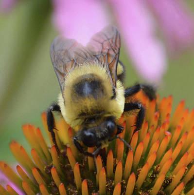 Fuzzy Digital Art - Bumble My Bee by Kandace Koch