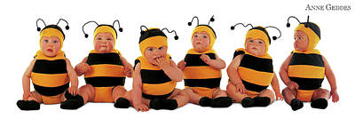 Bee Wall Art - Photograph - Bumblee Bees by Anne Geddes