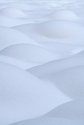 Photograph - Bump In The Snow - Vertical by Michael Blanchette