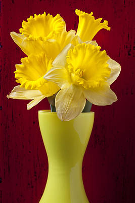 Narcissus Photograph - Bunch Of Daffodils by Garry Gay