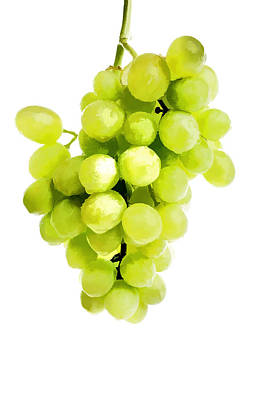 Bunch Of Fresh Grapes Art Print by Lanjee Chee