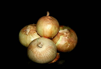 Bunch Of Onions Art Print