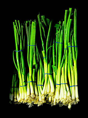Scallion Photograph - Bunch Of Scallions by Diana Angstadt
