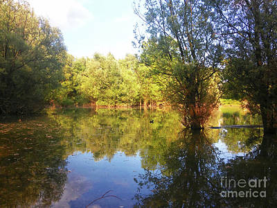 Photograph - Bundek Park Zagreb #5 by Jasna Dragun