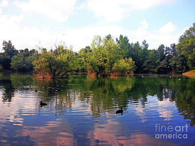 Photograph - Bundek Park Zagreb by Jasna Dragun