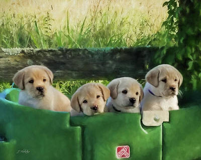 Painting - Bundles Of Joy - Labrador Art by Jordan Blackstone