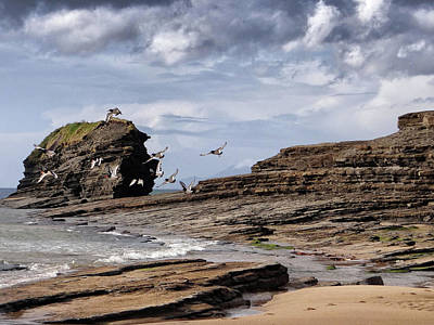 Photograph - Bundoran Beach - Rougey Rocks - Waterfowl Taking Flight - Wild Atlantic Way by John Carver