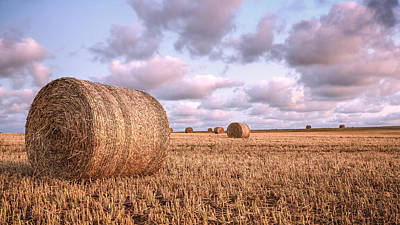 Photograph - Bundy Hay Bales #1 by Brad Grove