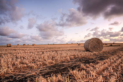 Photograph - Bundy Hay Bales #2 by Brad Grove