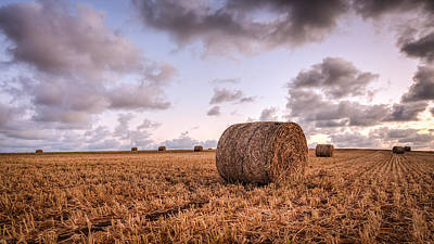 Photograph - Bundy Hay Bales #3 by Brad Grove