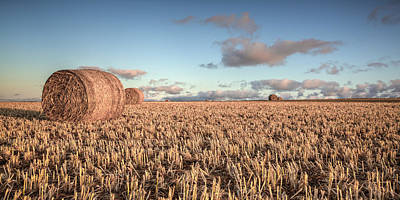 Photograph - Bundy Hay Bales #6 by Brad Grove