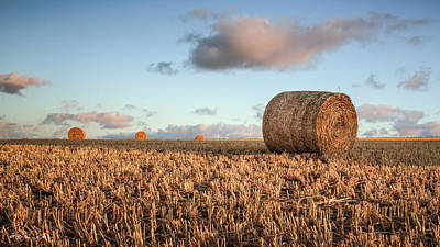 Photograph - Bundy Hay Bales #7 by Brad Grove