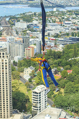 Photograph - Bungee Jumper In Auckland by Patricia Hofmeester