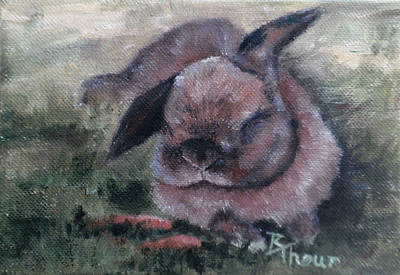 Painting - Bunny Dreams by Brenda Thour