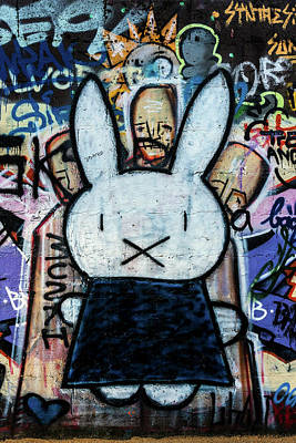 Photograph - Bunny Graffiti by Pierre Leclerc Photography