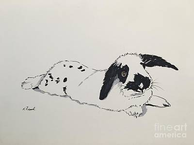 Drawing - Bunny by Kathy Flood