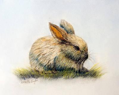 Painting - Bunny by Loretta Luglio